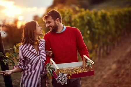 wine grapes in a vineyard. Young Winegrower couple in vineyard Stock Photo