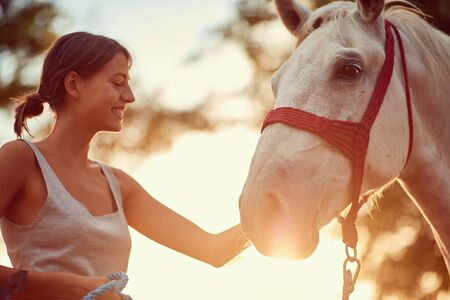 Smiling young woman rider and her beautiful horse at summer day on the farm.