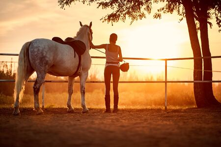 Female horse rider in a company of her horse looking at a sunset Archivio Fotografico