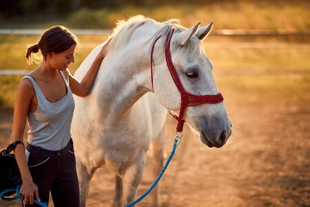 Horse rider developing a healthy relation with her horse, equestrian skills