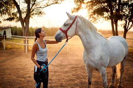 Pretty girl and her horse in the equestrian centre Stock Photo
