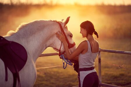 Loving young woman gently petting her stallion as sun sets behind them. Fun on countryside, sunset golden hour. Freedom nature concept.