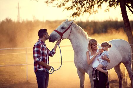 Family having a good time with their white horse. Fun on countryside, sunset golden hour. Freedom nature concept.