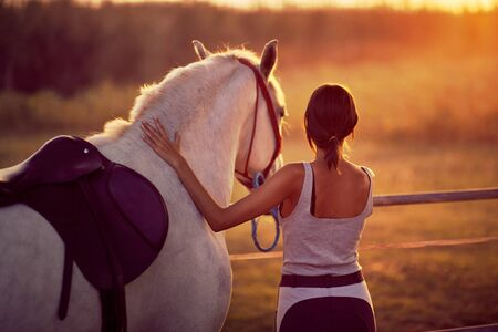 Brunette young woman and her horse looking at the sunset. Fun on countryside, golden hour. Freedom nature concept. Zdjęcie Seryjne