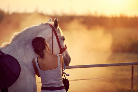 Woman rests her head on a horse,watching in the distance. Fun on countryside, sunset golden hour. Freedom nature concept.