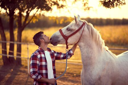 Man kissing his horse on the ranch, loving animal. Fun on countryside, sunset golden hour. Freedom nature concept.