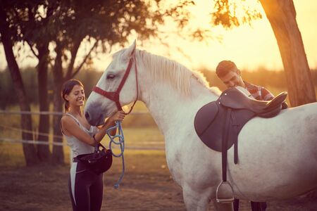 Man putting a saddle on a horse, while woman puts on the reins . Training  and fun on countryside, sunset golden hour. Freedom nature concept.