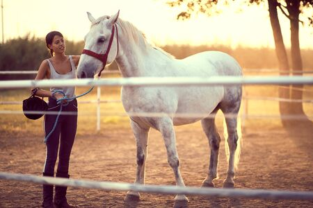 Woman and her beautiful horse bonding outside. Training on countryside, sunset golden hour. Freedom nature concept. Stock Photo