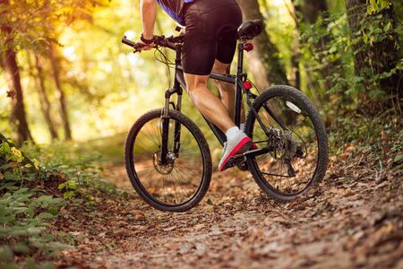 low angle view cyclist riding mountain bike through the sunny forest .Spring, nature ,sport concept