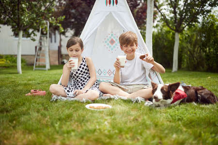 Kids camping in a backyard on a sunny weather