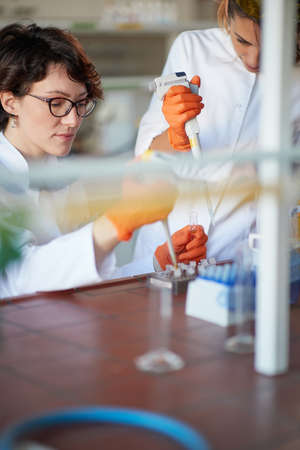 A young female students working with pipettes in a sterile laboratory environment. Science, chemistry, lab, people Standard-Bild