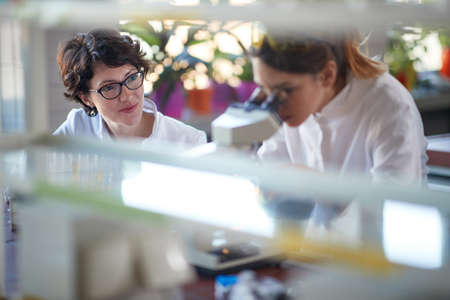 Young female chemistry students work with a microscope in a laboratory in a relaxed atmosphere. Science, chemistry, lab, people