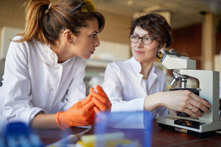Two female laborant practitioners analyzing samples for analysis