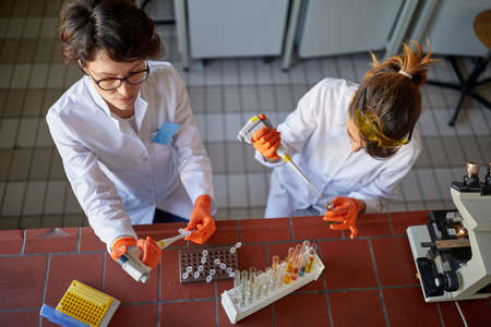 Two female laborant technicians preparing samples for analysis