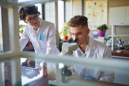 Two laborant practitioners analyzing samples together in the lab Standard-Bild