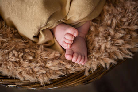 Little adorable legs of newborn baby, new life and new steps