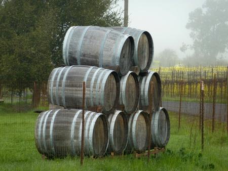 Stacked wine barrels, Napa Valley, California  photo