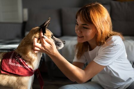Smiling woman showing affection to dog 写真素材