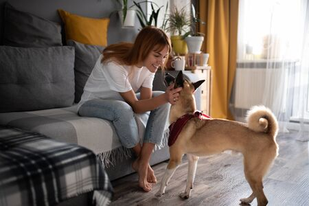 Cheerful lady petting the dog at home