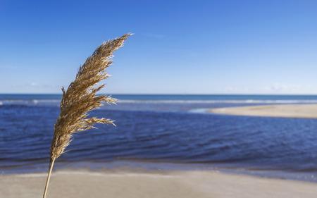 The lightness of blue sea and sky Stock Photo