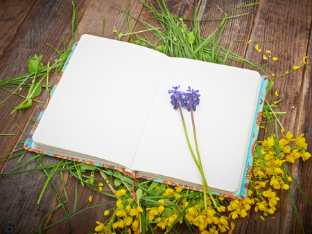 Open notebook on a table strewn with flowers and grass photo