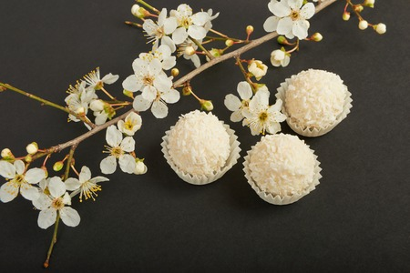panellets: Coconut cookies on black background