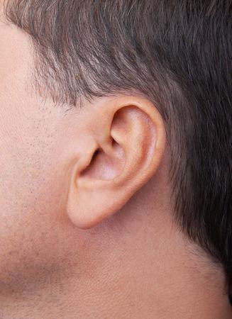 oido: Primer plano de un fondo perfecto o�do humano