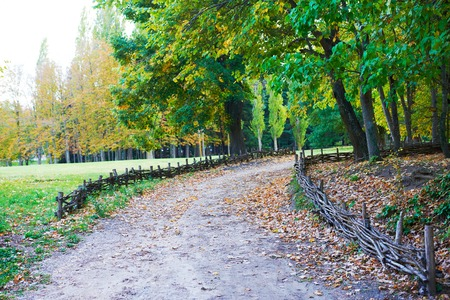 poling: Traditional lath fence around in garden Stock Photo