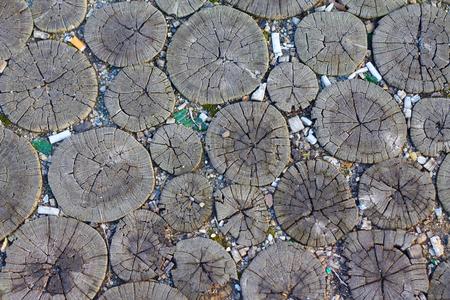 walking paths: Walking paths made of round wooden stumps Stock Photo