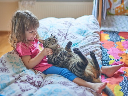 The girl plays with a kitten, an interior
