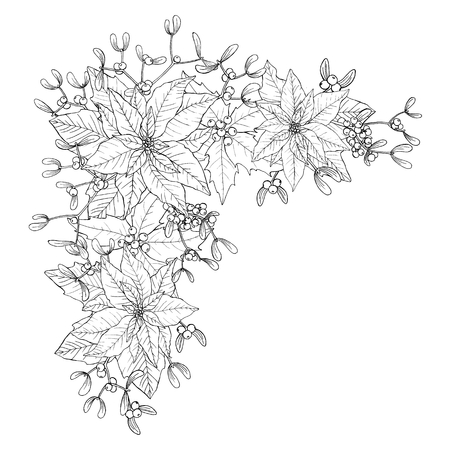 Christmas bouquet made of poinsettia, holly, leaves and mistletoes. Floral winter decoration. Vector objects on white background. Vectores