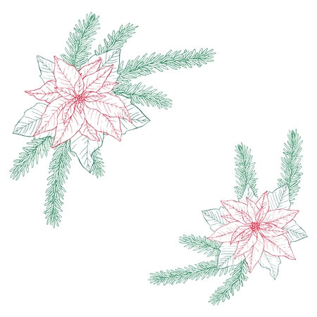 Christmas bouquets made of fir, poinsettia and leaves. Floral winter decoration. Vector objects on white background