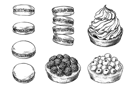 Set of delicious hand drawn creamy biscuit, french macaroons and tarts with berries. Engraving style pen pencil painting retro vintage vector lineart illustration on white background. Collection of sweet desserts.