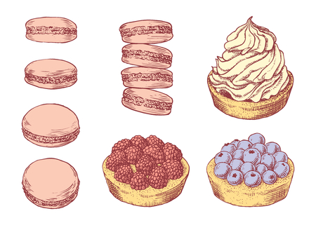 Set of delicious hand drawn creamy biscuit, french macaroons and tarts with berries. Engraving style pen pencil painting retro vintage vector lineart colored illustration on white background. Collection of sweet desserts. Vektoros illusztráció