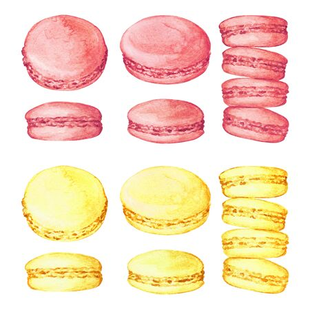 Set of delicious hand drawn french macarons in different positions and colors. Watercolor realistic illustration on white background. Sweet cookies.