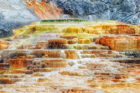 source: Yellowstone National Park,  Wyoming