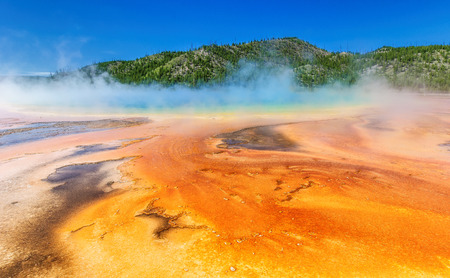 mountain oasis: Grand Prismatic Spring,  Yellowstone National Park,  Wyoming