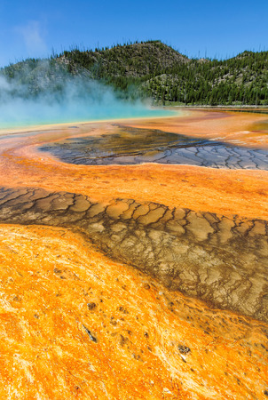 prismatic: The Grand Prismatic Spring, Yellowstone National Park