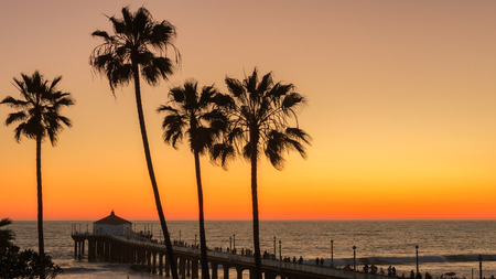 The Palm trees and Manhattan Beach Pier under a beautiful sunset Los Angeles California.