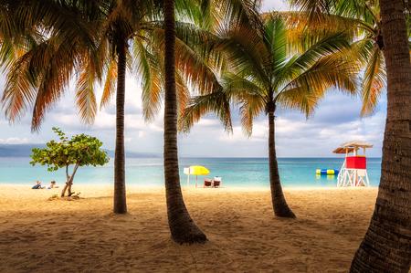 resort: Palm trees on Jamaica beach