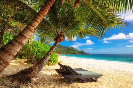 Strandstoel op zonnige kust. Seychellen. Mahe.