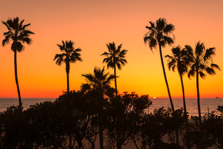 Sunset view at Los Angeles beach