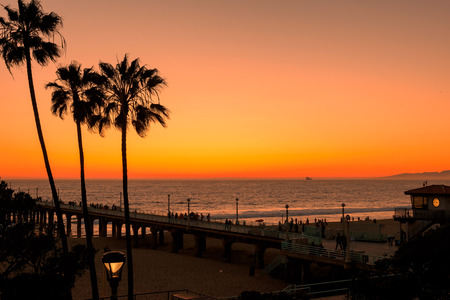 Palm trees at California Beach 免版税图像 - 52661720