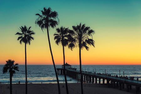 pier: Palm trees at California Beach. Vintage processed. Fashion travel and tropical beach concept.