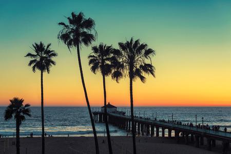 Palmen bij het Strand van Californië. Vintage verwerkt. reizen mode en tropisch strand concept.