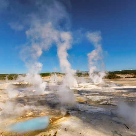 geysers: Beautiful Geysers in Norris Basin at Sunny day, Yellowstone National Park, WY