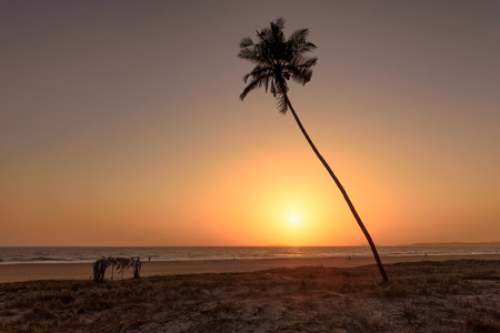 taken: Palms on the beach and sun, tropical sunset taken in Goa, India Stock Photo