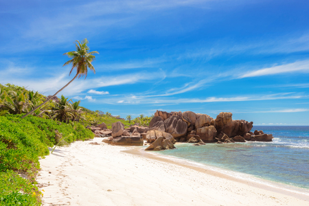 argent: Palm trees and granite rocks on dream beach at Seychelles