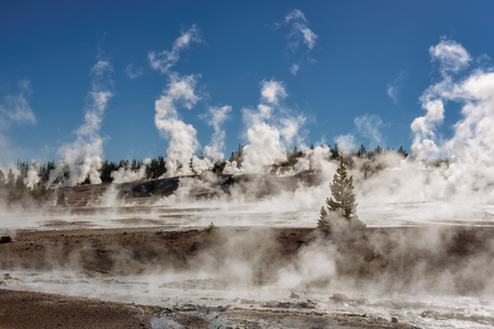 Geysers in Norris Basin, Yellowstone National Park Stock Photo