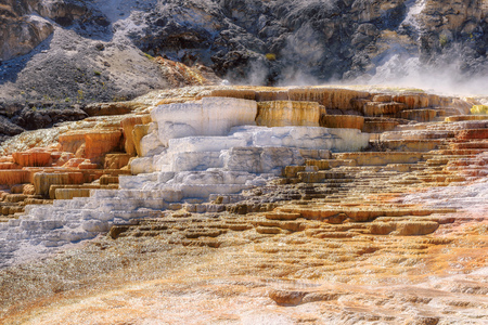 Minerva Terrace, Yellowstone National Park, Wyoming, USA